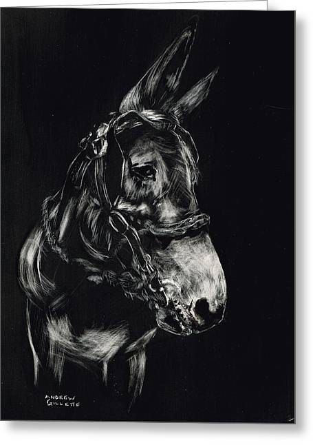 Mule Polly In Black And White Greeting Card