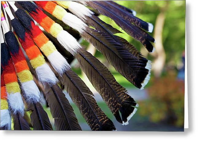 Multi-colored Feathers Of An Indian National Headdress Greeting Card by Sergey Dobrydnev