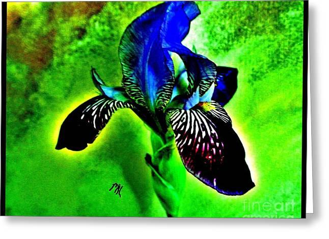 Multicolor Iris Greeting Card by Marsha Heiken