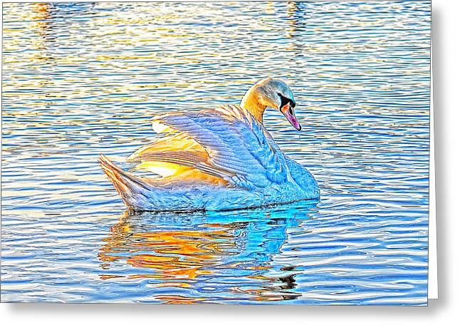 Multicolour Swan Greeting Card