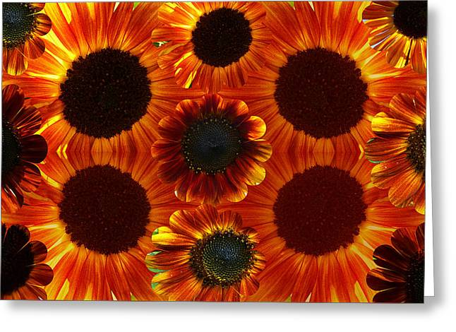 Multiples Of Sunflowers Greeting Card