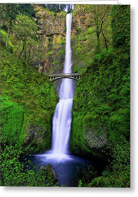 Multnomah Dream Greeting Card