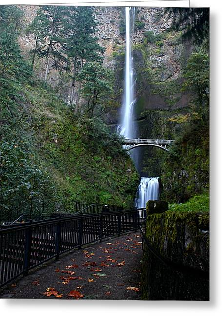 Multnomah Falls - Fall Begins Greeting Card