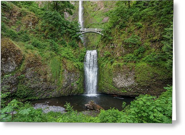 Greeting Card featuring the photograph Multnomah Falls In Spring by Greg Nyquist