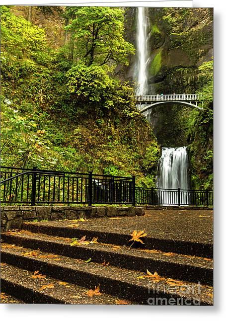 Multnomah Falls,oregon Greeting Card