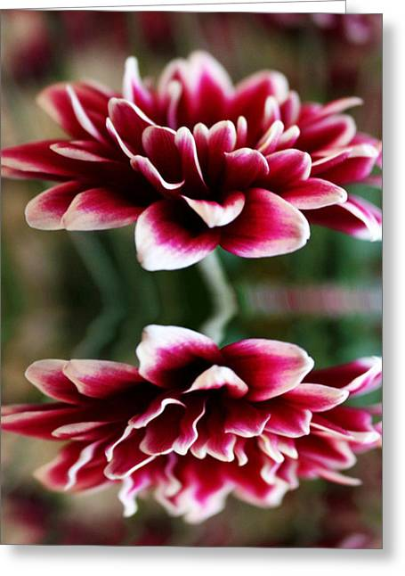 Mum In Reflection Greeting Card by Cathie Tyler