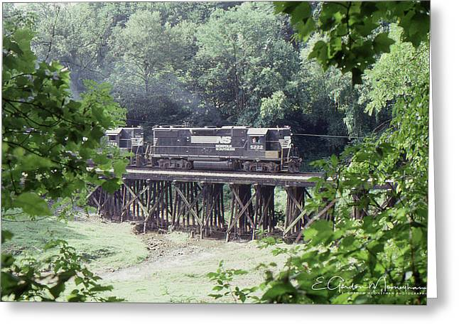 Murphy Branch Freight Greeting Card