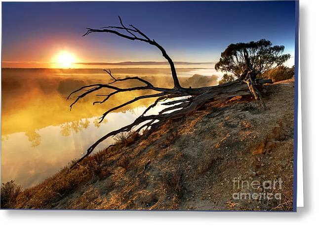 Murray River Sunrise Greeting Card