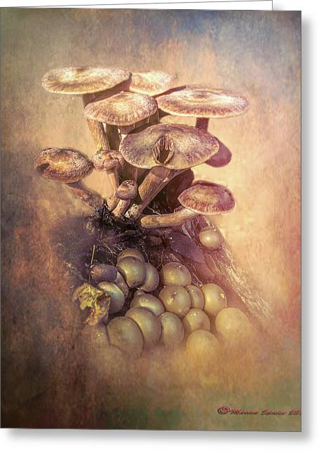 Mushrooms Gone Wild Greeting Card