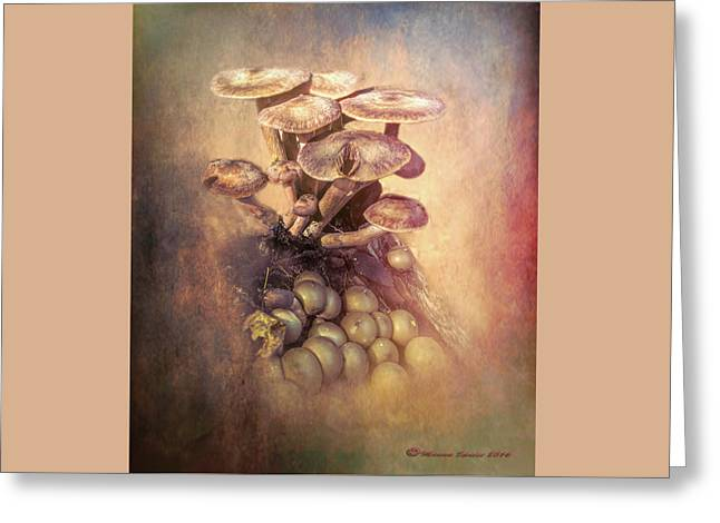 Mushrooms Gone Wild Greeting Card by Marvin Spates