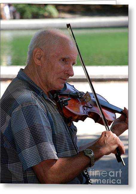 Musician In Central Park Greeting Card by Terri Creasy