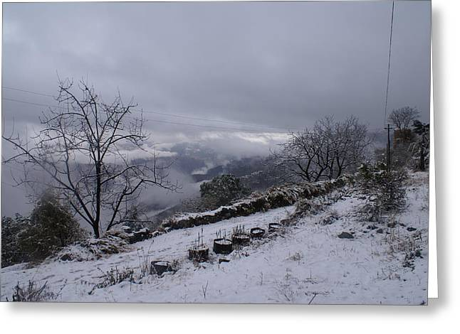Mussoorie Winter - 2 Greeting Card by Padamvir Singh