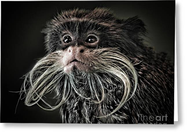 Mustache Monkey IIi Altered Greeting Card