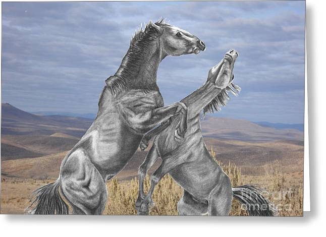 Mustang Battle Greeting Card by Russ  Smith
