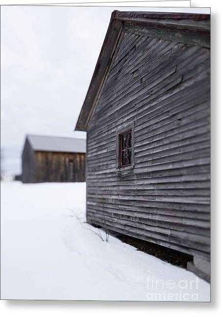 Musterfield Farm North Sutton Nh Old Buildings In The Snow Greeting Card