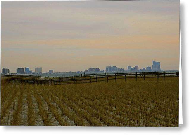 Muted City Beyond Bramble Greeting Card by My Lens and Eye   - Judy Mullan -