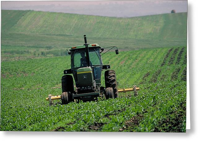 My Big Green Tractor Greeting Card