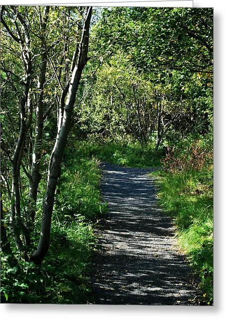 My Favorite Path Greeting Card by Marilynne Bull