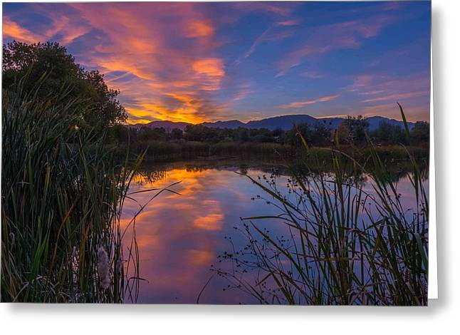 My Favorite Pond Greeting Card by Luis A Ramirez