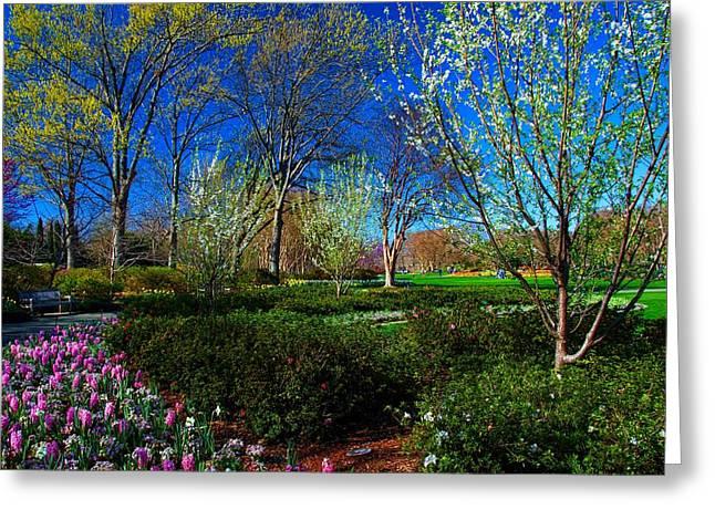 My Garden In Spring Greeting Card