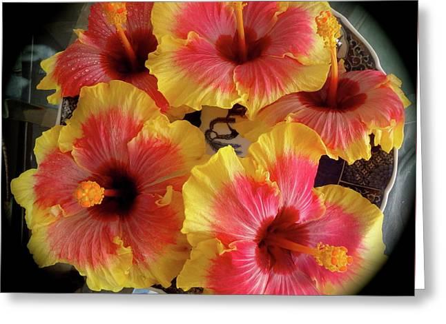 My Hibiscus Garden Greeting Card