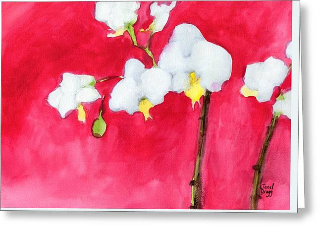 My Little Orchid Greeting Card by Janel Bragg