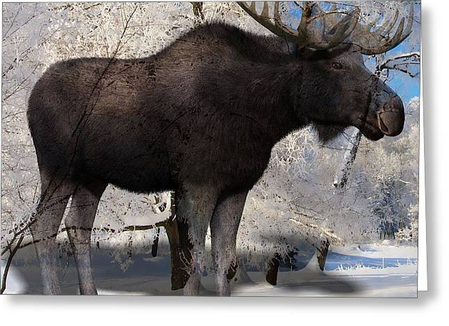 My My Moose Greeting Card