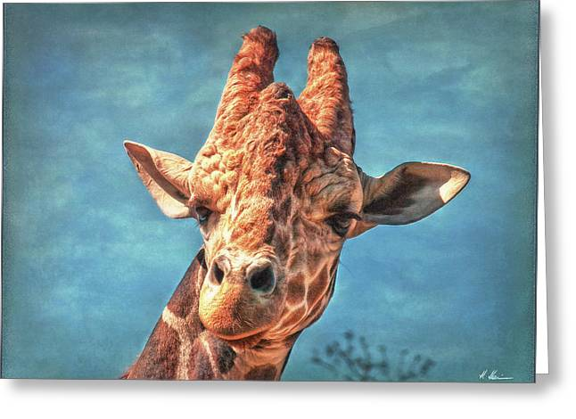 Greeting Card featuring the photograph My Name Is Bingwa by Hanny Heim
