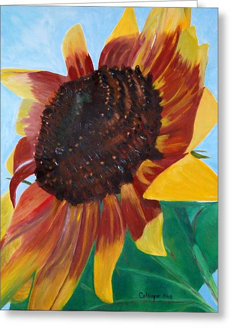 My Neighbor's Sunflower Greeting Card