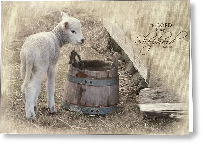 Greeting Card featuring the photograph My Shepherd by Robin-Lee Vieira