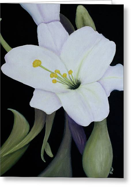 My White Lily Greeting Card by Mary Gaines