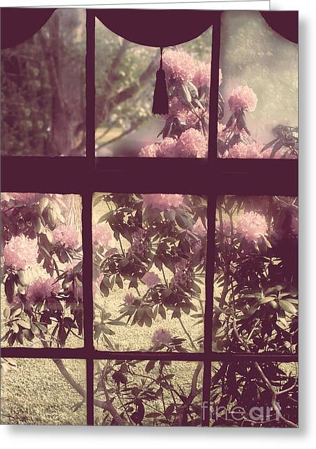My Window Greeting Card by Mindy Sommers