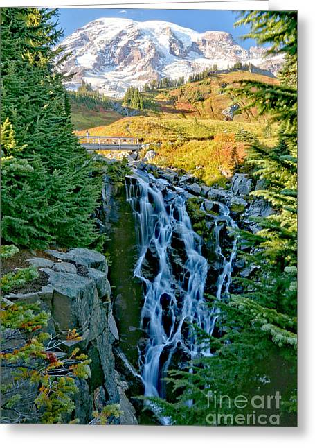 Myrtle Falls Portrait Greeting Card by Adam Jewell