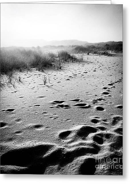 Mystery Beach Greeting Card by JMerrickMedia