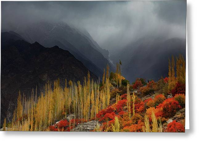 Mystery Mountains Greeting Card