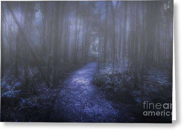 Mystery Pathway Greeting Card by Jorgo Photography - Wall Art Gallery