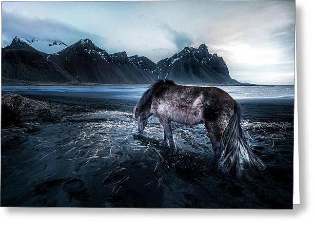 Mystic Icelandic Horse Greeting Card