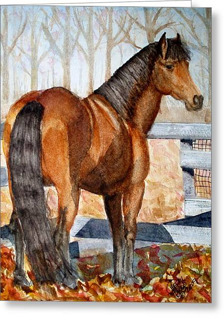 Mystic In Her Paddock Greeting Card by Cheryl Dodd
