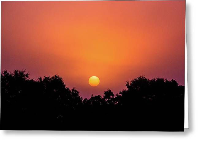 Greeting Card featuring the photograph Mystical And Dramatic by Shelby Young