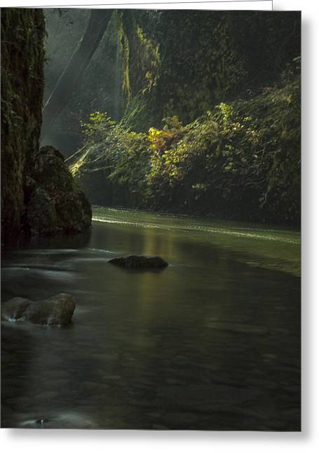 Mystical Canyon Greeting Card