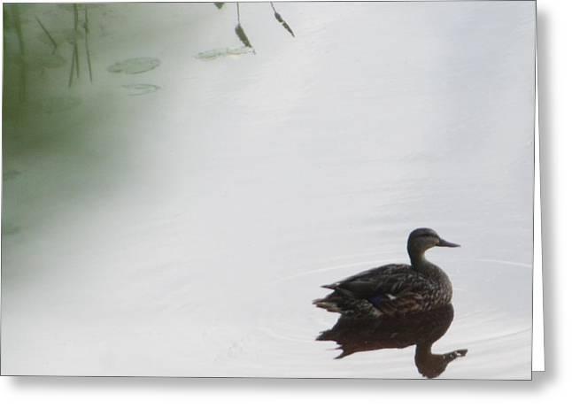 Mystical Duck Greeting Card by Nancy TeWinkel Lauren