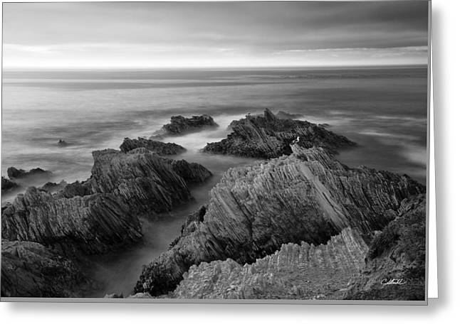 Mystical Moment Bw Greeting Card