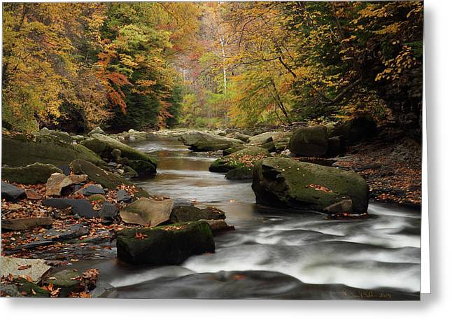 Mystique Waters Greeting Card