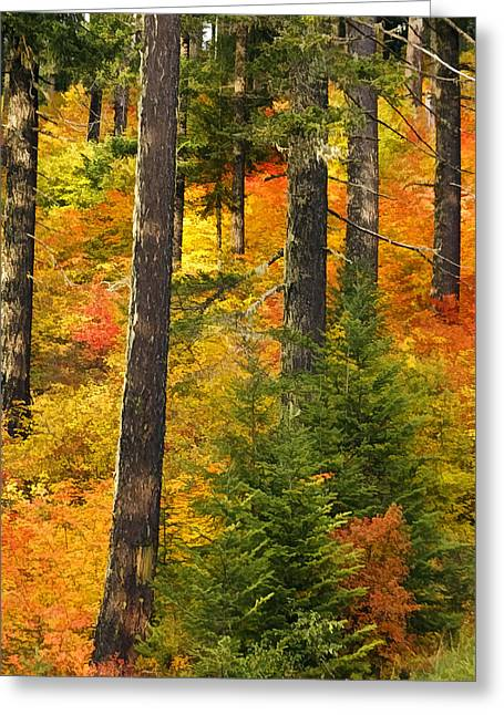 N W Autumn Greeting Card