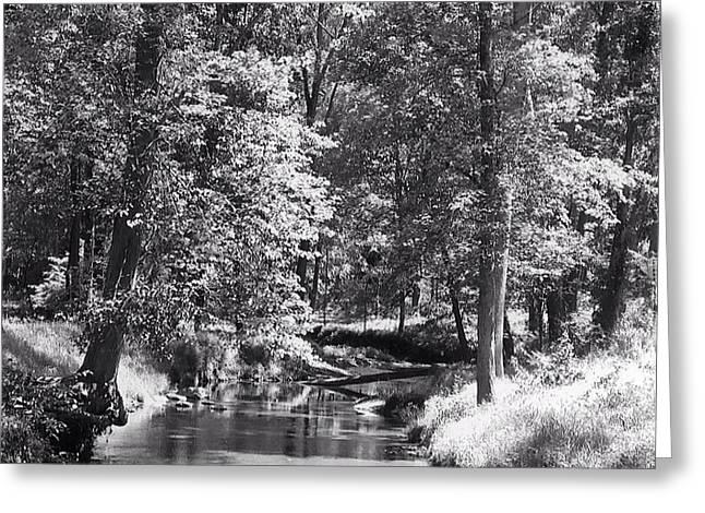 Greeting Card featuring the photograph Nadine's Creek In Black And White by Kathy Kelly