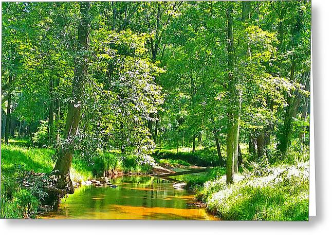 Nadine's Creek Greeting Card by Kathy Kelly