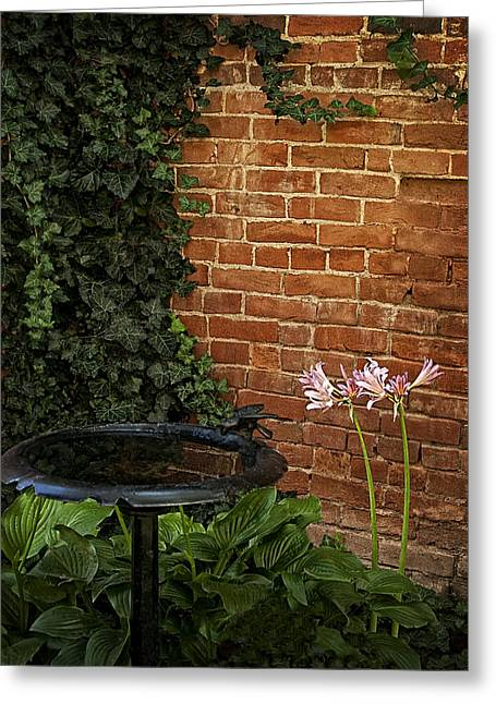 Naked Ladies In The Garden Corner Greeting Card