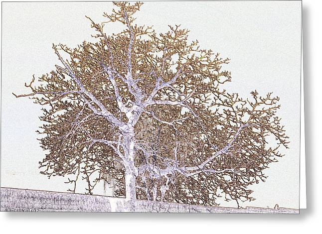Naked Limbs Greeting Card