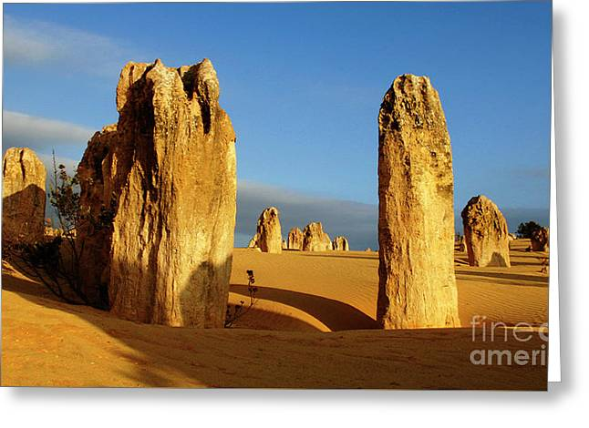 Nambung Desert Australia 11 Greeting Card by Bob Christopher
