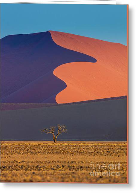 Namib Dune Greeting Card by Inge Johnsson